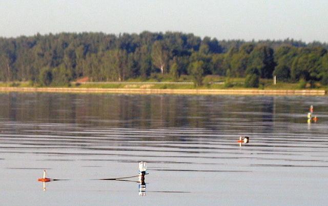 На водоемах с течением к кружкам крепят дополнительные поплавки из пластиковых бутылок.