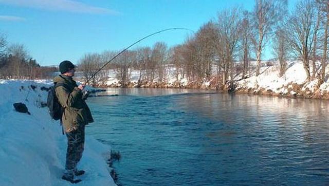 В ноябре щуку на спиннинг можно ловить и с берега - стоит только найти точку.