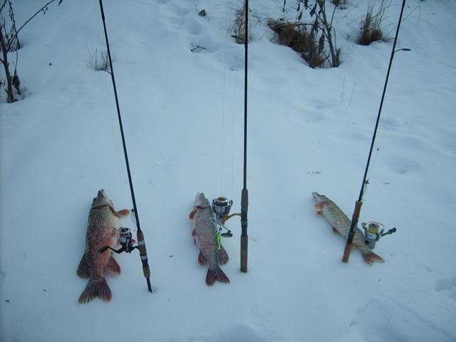 Отличные результаты приносит джиг при ловле щуки на зимний спиннинг.