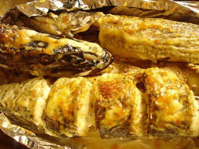 блюда из щуки рецепты приготовления в духовке с фото